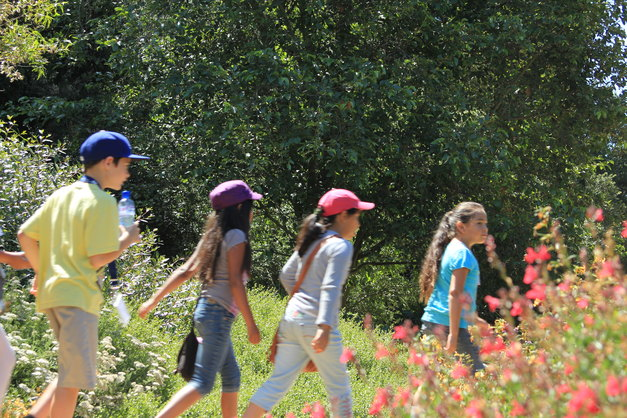Shipley Nature Center Summer Camp