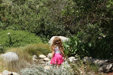 Curious Girl at the Stream